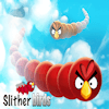 Slither Birds icon